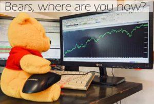 bears, where are you?