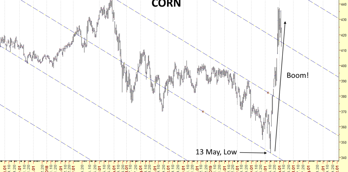 Corn 2019 May Uptrend
